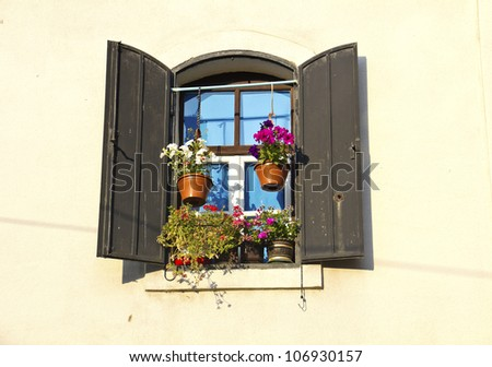 Old European Wooden Window and open shutters with flowers