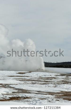 Old Faithful Geyser Erupting, Yellowstone National Park, WY - stock photo