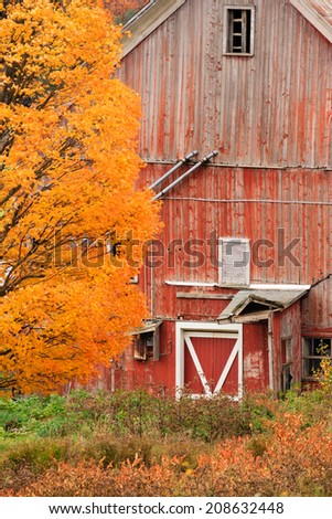 Old falling down country barn during fall foliage season in Stowe, Vermont, USA - stock photo