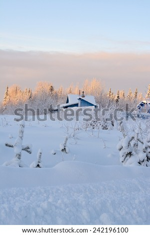 Old farm in the north winter forest