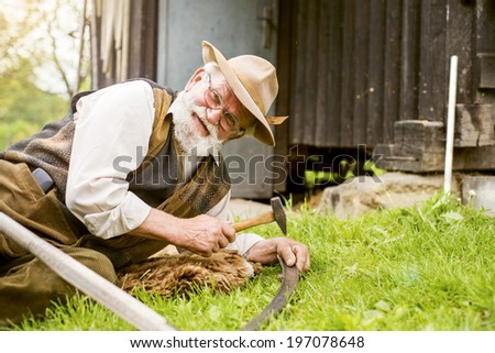 Old farmer with beard is repairing his scythe before using to mow the grass traditionally - stock photo