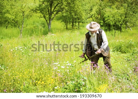 Old farmer with beard using scythe to mow the grass traditionally - stock photo