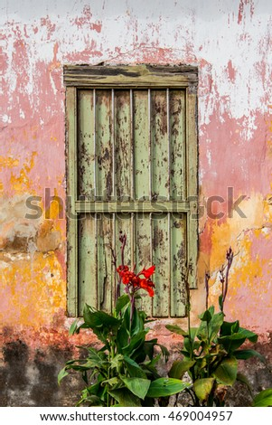 old green colonial window on pink wall with peeling paint and red flower in front
