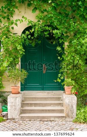 Old green wooden front door with virginia creeper - stock photo
