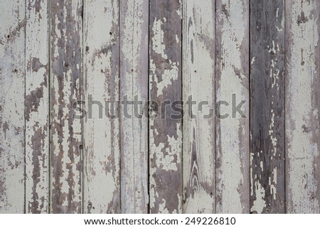 Old grunge fence of wood panels, background texture