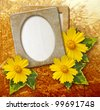 Old grunge photo frame with daisy against park - stock photo