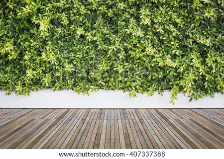 Old hardwood decking or flooring and plant in garden decorative - stock photo