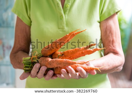 Old Hispanic woman holding fresh carrots, recently being pulled from the soil. After the economic changes introducing elements of the  market economy, the prices has climbed steadily - stock photo
