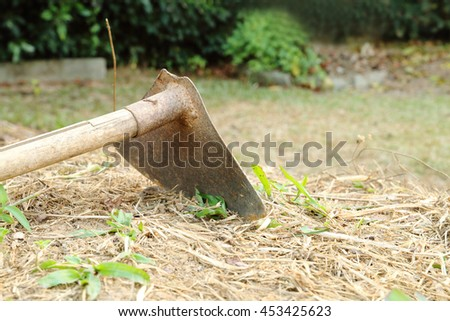 old hoe on the ground use for weed