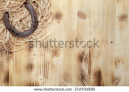 Old horseshoe on a wooden board - stock photo