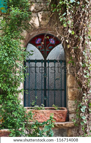 Old house window with ivy braid it, Rosh Pinna, Upper Galilee, Israel - stock photo