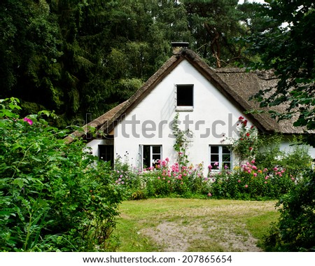 old house with big flowers in front - stock photo