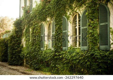 old house with ivy on the wall - stock photo