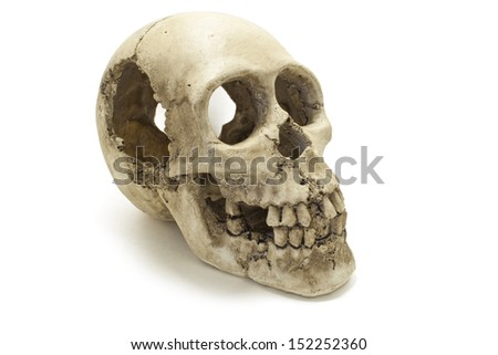Old human skull isolated against white background - stock photo