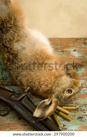Old hunting scene with dead hare, rifle and bullets - stock photo