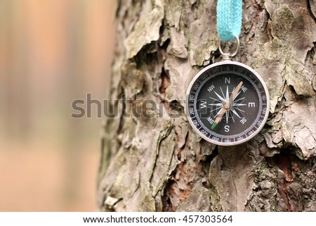 Old iron compass on tree in forest. Blurred background for inscription. - stock photo