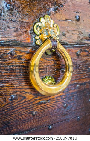 Old italian wooden door with metal knocker - stock photo