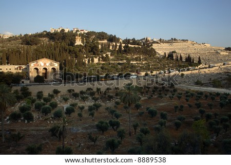 Old Jerusalem - Mount of Olives - stock photo