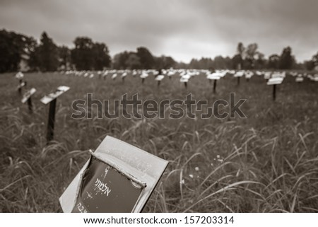 Old Jewish cemetery in Lodz, Poland. The cemetery is the biggest of its kind in Europe, with 180,000 graves, many of which are of historic interest. - stock photo