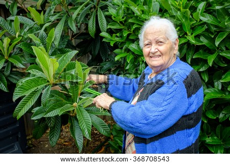 Old lady holds branch of green garden tree and holds small saw to branch