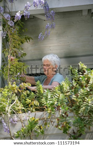 Old lady looking after the plants on her balcony