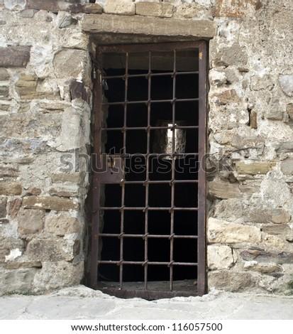 Old lattice door - stock photo