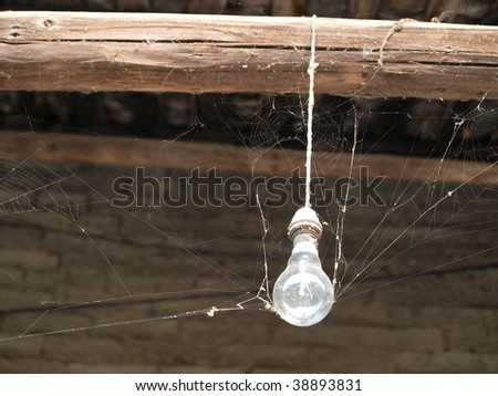 Old  light bulb with cobweb.