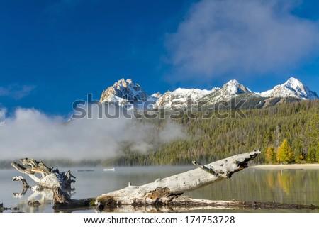 Old log in an Idaho mountain lake fall - stock photo