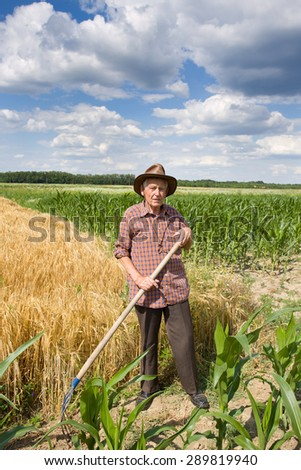 old man farmer standing and holding fork in barley field - stock photo