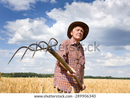 Old man farmer working in barley field in summer time, blue sky with white clouds in background - stock photo