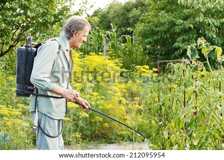 old man spraying of pesticide on country garden in summer