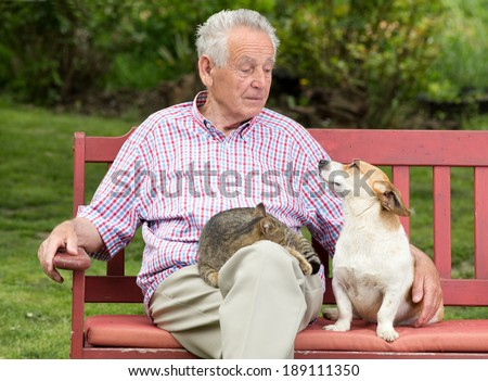 Old man talking to his dog while cat resting in his lap - stock photo