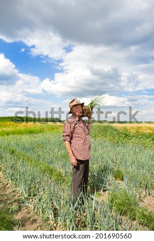 Old man with spring onion in knitted basket standing in field - stock photo