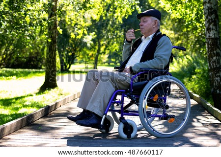 old man with the pipe on wheelchair in the park