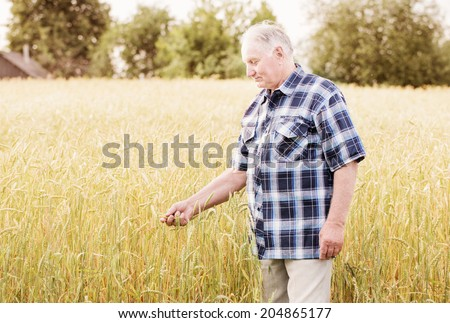 old men standing in wheat fields