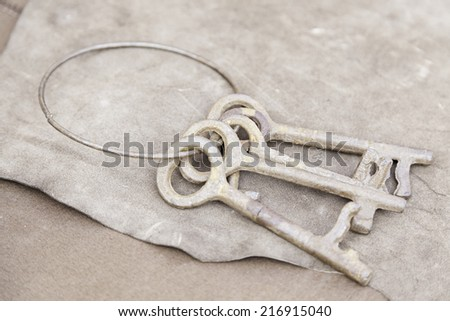 Old metal keys, a detail of security tools, antiquity - stock photo