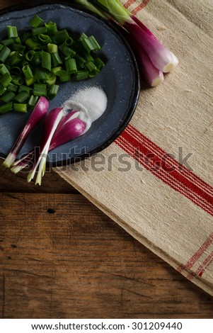 Old metal plate with onions and salt on retro woven tablecloth - stock photo