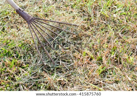 old metal rake on a wooden stick, collecting grass clippings, garden tools. - stock photo