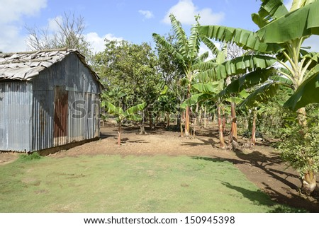 old metal shed by tropical plants in the Dominican republic - stock photo