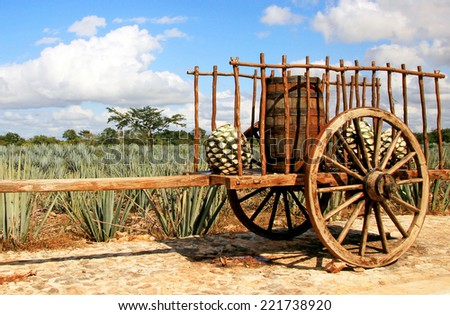 Old mexican trailer in front of blue agave plantation - stock photo