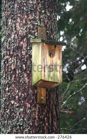 old moldy nesting box on a tree - stock photo