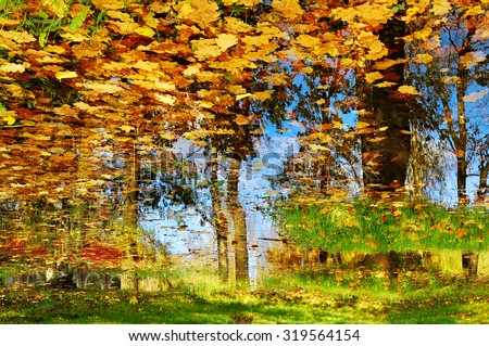 Old oak tree over a pond in sunny autumn weather - autumn landscape - stock photo