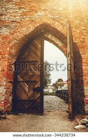 Old opened Wooden door with ornaments in ancient fortress - stock photo