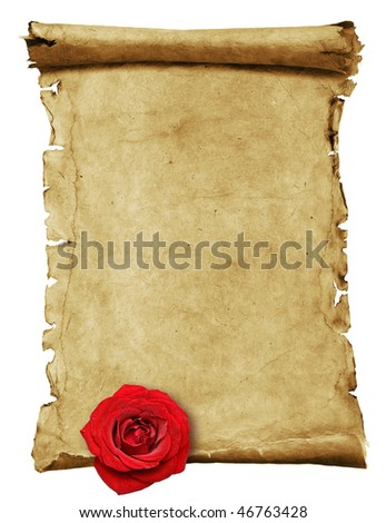 Old paper scroll isolated on white with rose