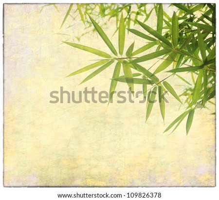 Old paper texture with bamboo. - stock photo