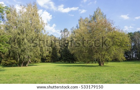 old park with green lawns and big trees. Belarus.