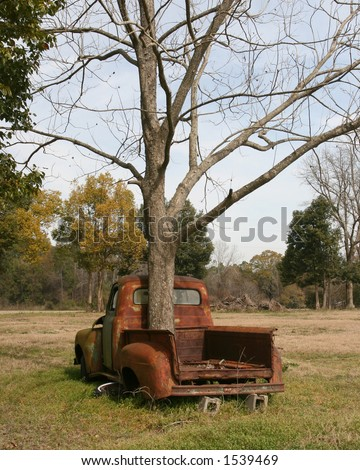 Old Pickup with tree growing through bed