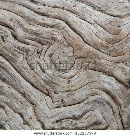 old planks wooden background or wood grain texture