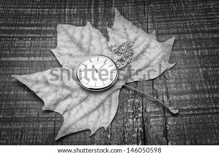 Old pocket watch on the autumn leaf. The symbol of nostalgia. - stock photo
