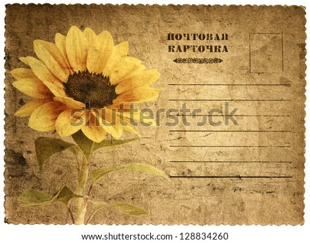 Old postcard with a picture of a sunflower. Russian language - stock photo